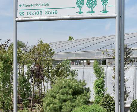 Seit dreißig Jahren finden Sie das Gartencenter Bosse in Sickte.