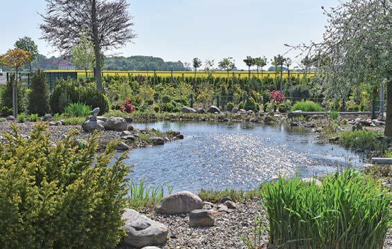 Garten- und Landschaftsbau – im Gartencenter Bosse erhalten Sie Planung und Ausführung aus einer Hand.